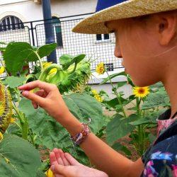 LABA Kreative Kindercamps in Wien_19