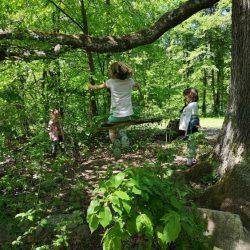 LABA Kreative Kindercamps www.labacamps.at_134
